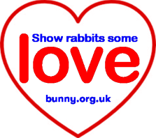 Show rabbits some love bigger website